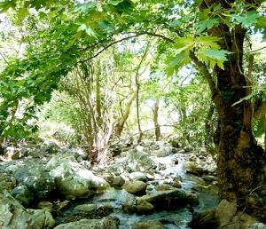 Sirikari Gorge